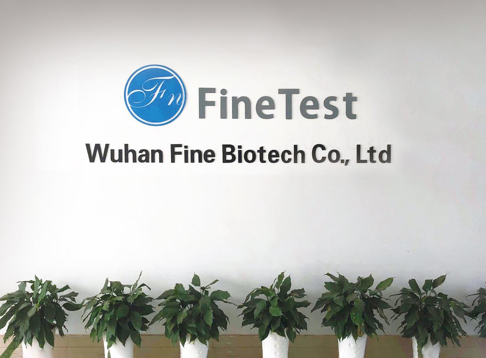 武汉菲恩生物科技有限公司